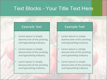 0000073137 PowerPoint Templates - Slide 57