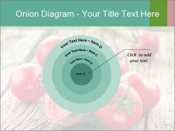 0000073137 PowerPoint Templates - Slide 61
