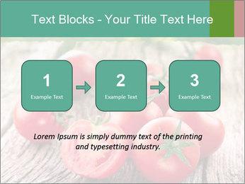 0000073137 PowerPoint Template - Slide 71