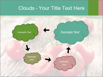 0000073137 PowerPoint Templates - Slide 72