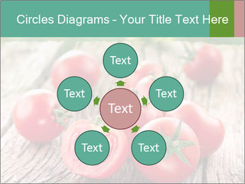 0000073137 PowerPoint Template - Slide 78