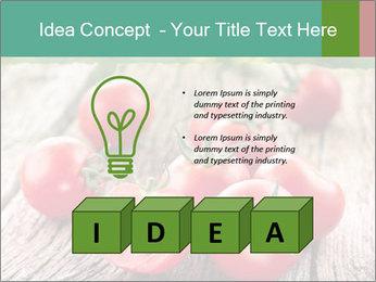 0000073137 PowerPoint Template - Slide 80