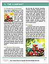 0000073137 Word Template - Page 3