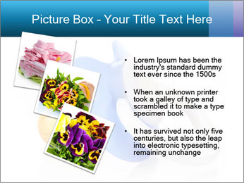 0000073155 PowerPoint Templates - Slide 17
