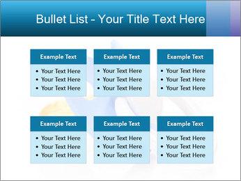 0000073155 PowerPoint Templates - Slide 56