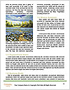 0000073157 Word Templates - Page 4
