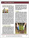 0000073159 Word Templates - Page 3