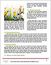 0000073159 Word Templates - Page 4