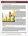 0000073159 Word Templates - Page 8