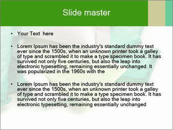 0000073161 PowerPoint Template - Slide 2