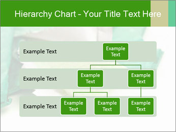0000073161 PowerPoint Template - Slide 67