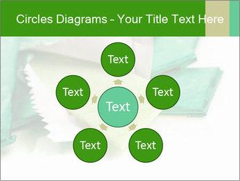 0000073161 PowerPoint Template - Slide 78