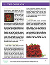 0000073162 Word Template - Page 3