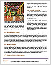 0000073165 Word Templates - Page 4