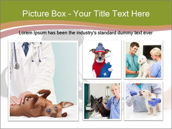 0000073171 PowerPoint Templates - Slide 19