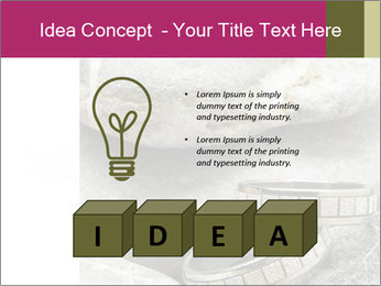0000073174 PowerPoint Template - Slide 80