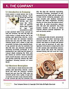 0000073174 Word Template - Page 3