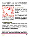 0000073174 Word Template - Page 4