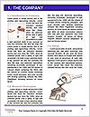 0000073176 Word Template - Page 3