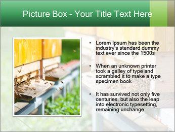 0000073177 PowerPoint Template - Slide 13