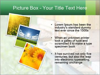 0000073177 PowerPoint Template - Slide 17