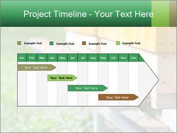 0000073177 PowerPoint Template - Slide 25