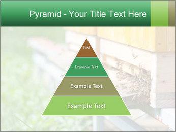 0000073177 PowerPoint Template - Slide 30