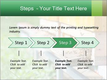 0000073177 PowerPoint Template - Slide 4