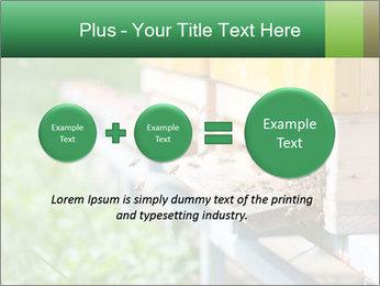 0000073177 PowerPoint Template - Slide 75