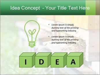 0000073177 PowerPoint Template - Slide 80