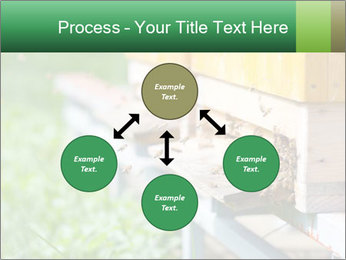 0000073177 PowerPoint Template - Slide 91