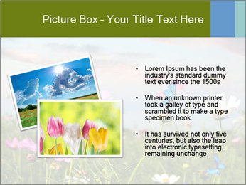 0000073180 PowerPoint Templates - Slide 20