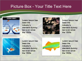 0000073183 PowerPoint Template - Slide 14