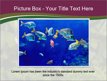 0000073183 PowerPoint Template - Slide 16