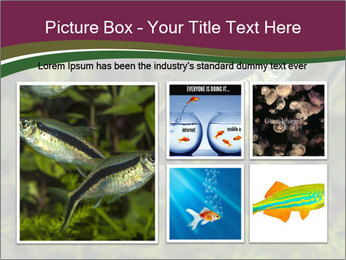 0000073183 PowerPoint Template - Slide 19