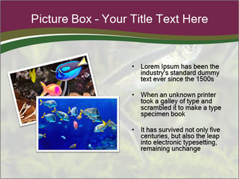 0000073183 PowerPoint Template - Slide 20