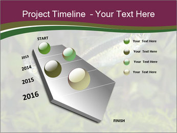 0000073183 PowerPoint Template - Slide 26