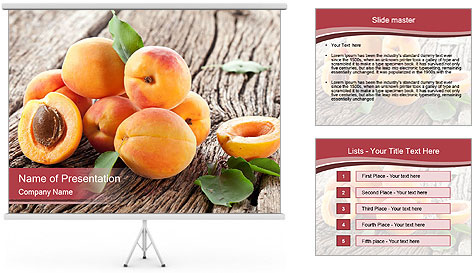 0000073191 PowerPoint Template