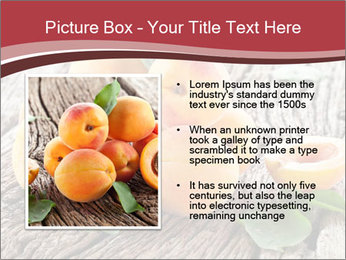 0000073191 PowerPoint Template - Slide 13