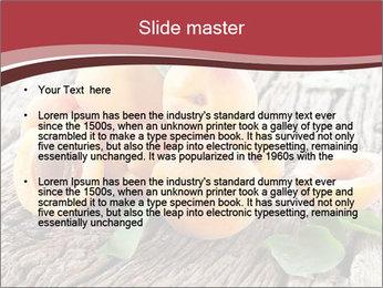 0000073191 PowerPoint Template - Slide 2