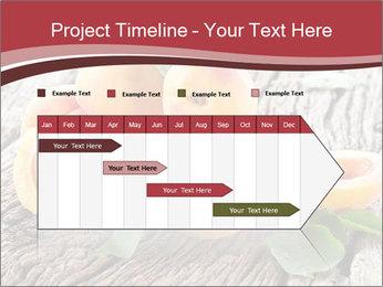 0000073191 PowerPoint Template - Slide 25