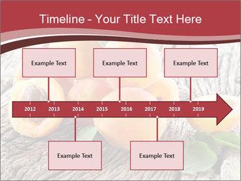 0000073191 PowerPoint Template - Slide 28