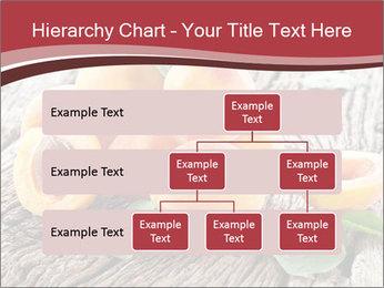 0000073191 PowerPoint Template - Slide 67