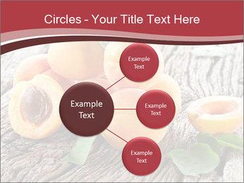 0000073191 PowerPoint Template - Slide 79