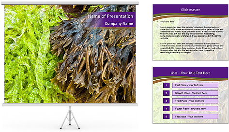 0000073192 PowerPoint Template