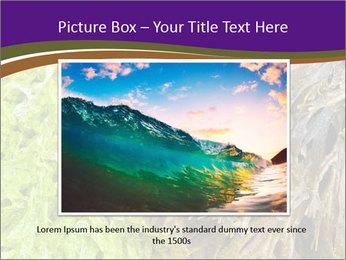 0000073192 PowerPoint Template - Slide 15