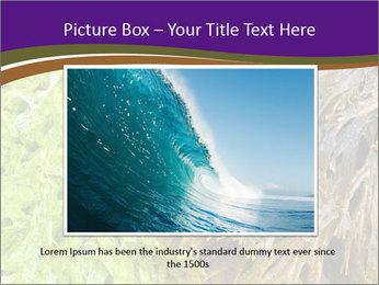 0000073192 PowerPoint Template - Slide 16