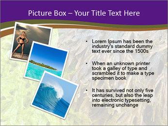 0000073192 PowerPoint Template - Slide 17