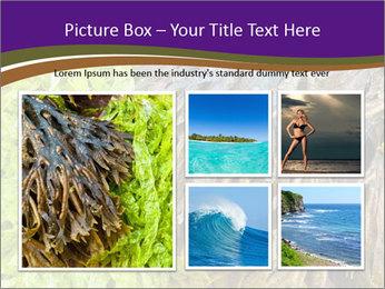 0000073192 PowerPoint Template - Slide 19