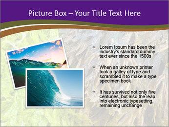 0000073192 PowerPoint Template - Slide 20